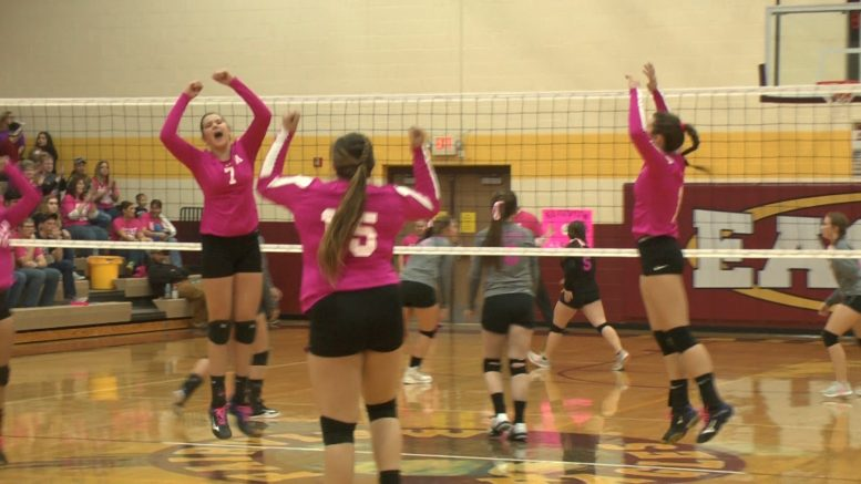 Mio Tops Fairview   In Pink Out Game October