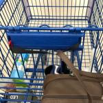 Alpena woman arrested for stealing from Walmart shopper